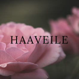 Haaveile